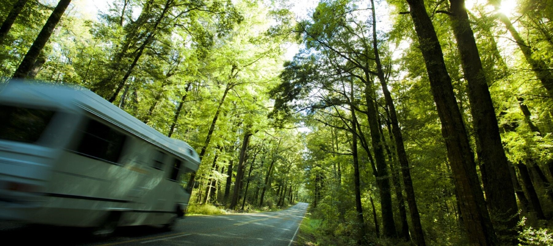 A campervan zooms along Milford Road, on its way to Milford Sound Lodge Rainforest Campervan Park.