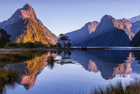 Queenstown to Milford Sound Package, mirror images of Milford Sound during Sunrise